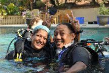 scuba diving eco internships