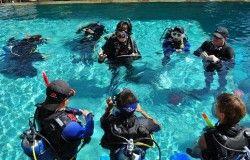 instructor_internships1
