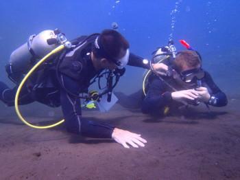 instructor internships checking diver