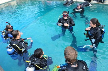 class instructor divers