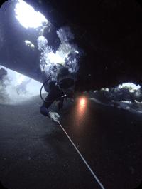 scuba diving internships specialty courses