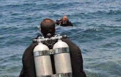 walking ocean diver