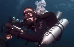 ready check diver