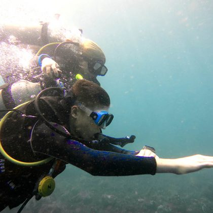 Develop the Ultimate Diving Skill: Underwater Navigation without a Compass