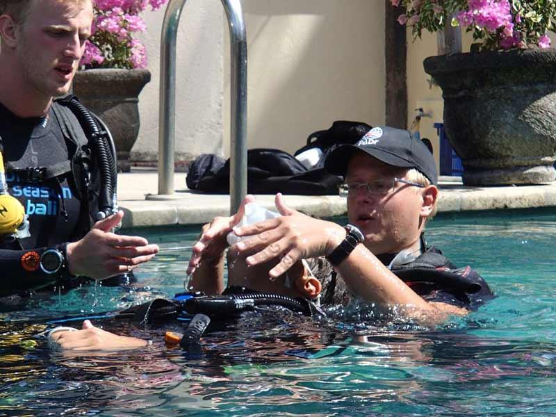 basics of diving in pool
