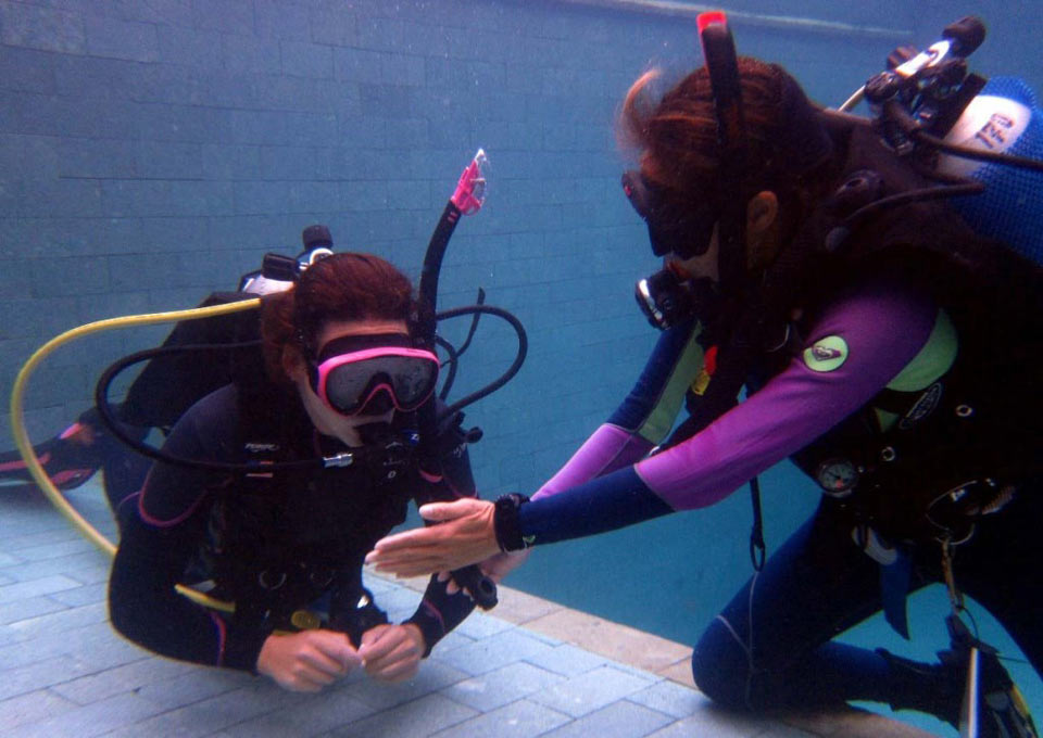 Teaching Tips: The most important dive skill… Diving Course