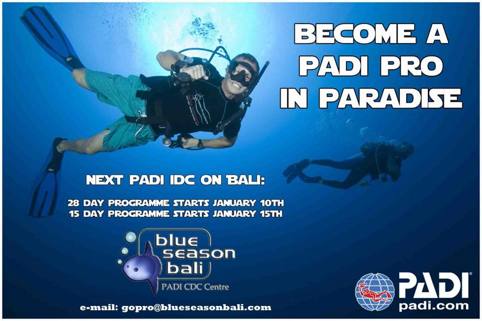 Becoming a PADI SCUBA Instructor in Diving