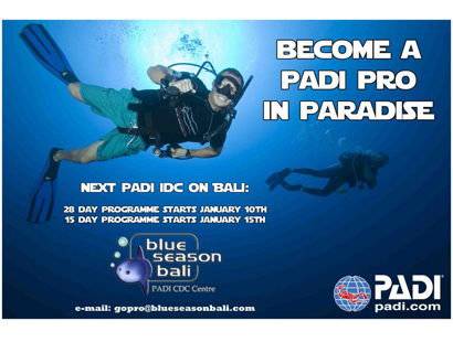 Becoming a PADI SCUBA Instructor Diving Course