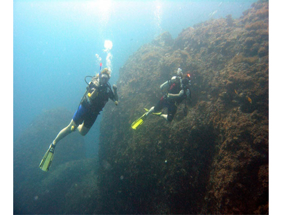 Benefits of Being a Specialty Instructor or Master Scuba Diver Trainer for diving in Bali