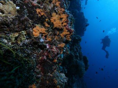 deep water cliff