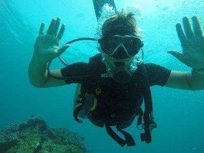 sea bottom fun