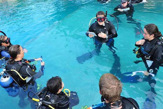 briefing in pool