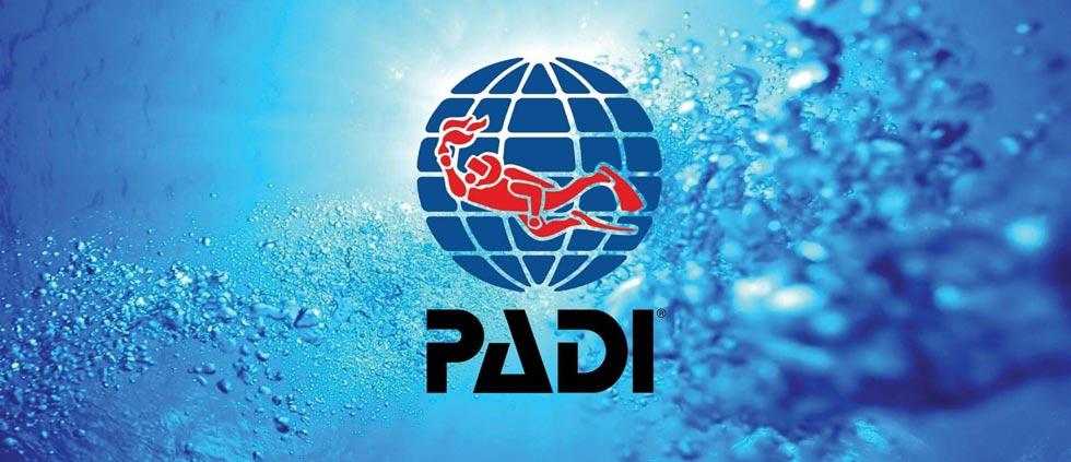 PADI IDC Internship LOGO