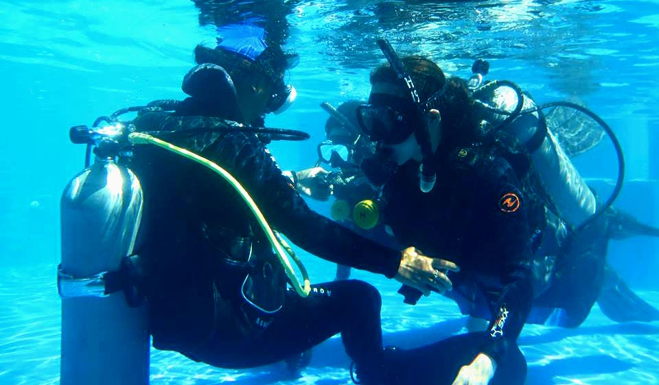 Freelence-as- PADI scuba diving instructor