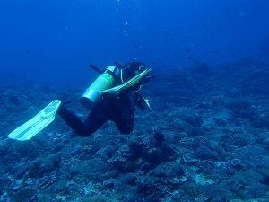 Scuba diving finning techniques