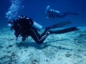 Bali Scuba diving finning techniques