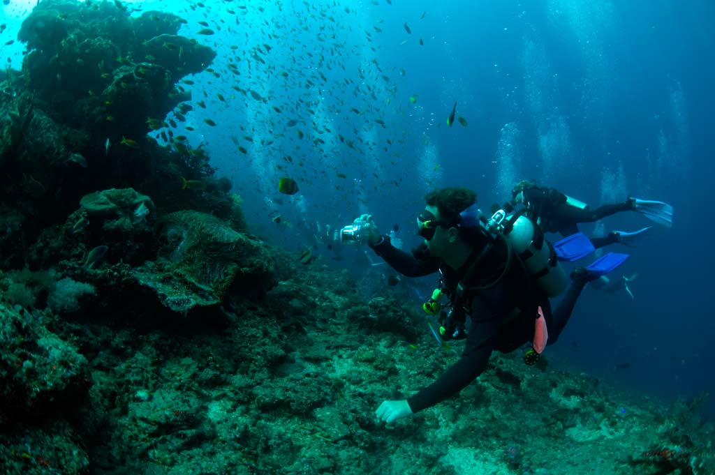 get a job dive instructor bali