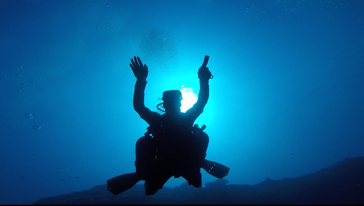Diver trim