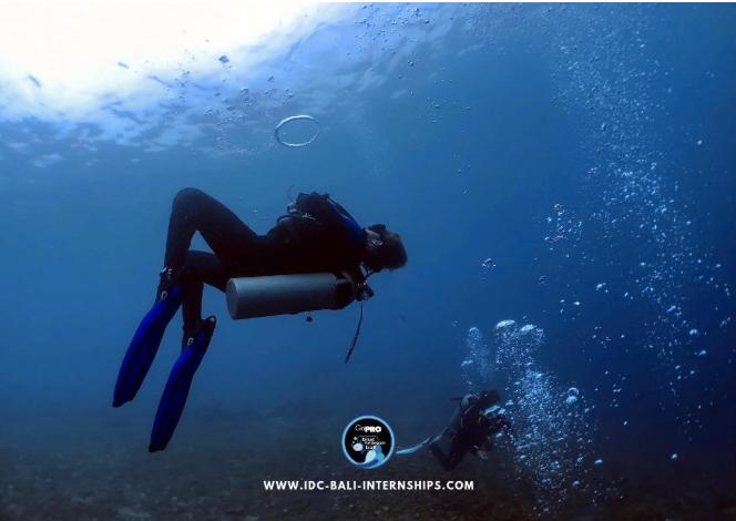 Diving healthy living in Bali