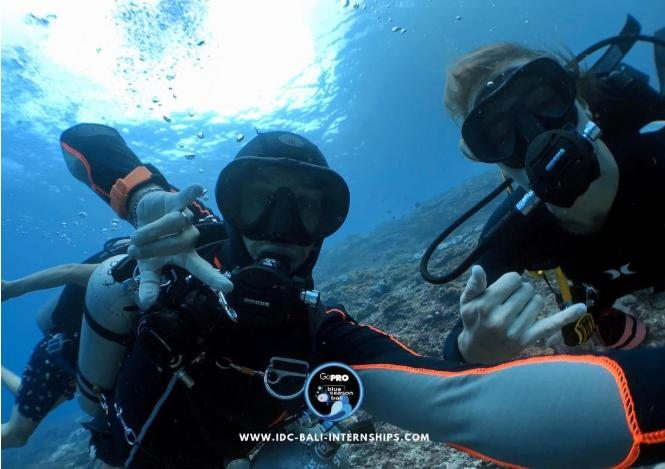 Love for scuba diving