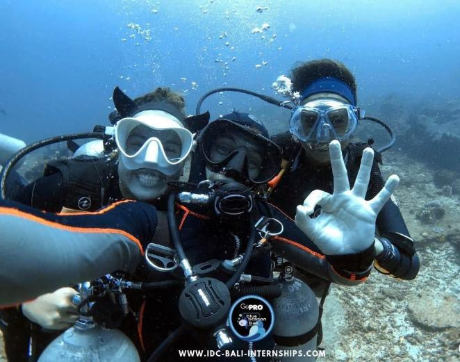 Reasons for Scuba Diving